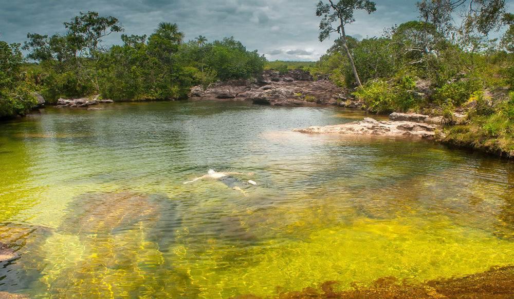 شقوق الصخور تصنع لوحة فنية رائعة من الألوان تحت الماء